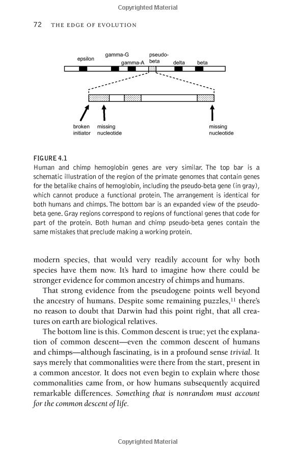 Behe, Edge of Evolution, p. 72